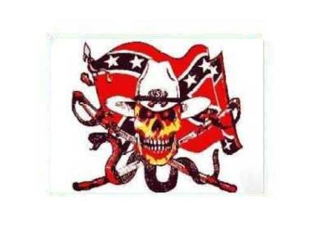 SNAKE SKULL REBEL FLAG